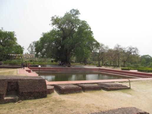 Mayadevi 2
