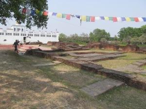 Mayadevi 6